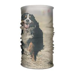 Cute Animal Bernese Mountain Dog Unisex Fashion Quick-drying