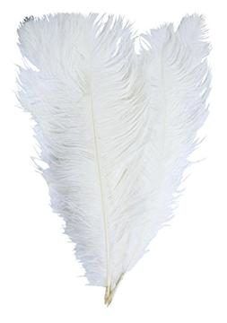 Mandala Crafts 17 to 19 Inches Dyed Plumes Wholesale Ostrich