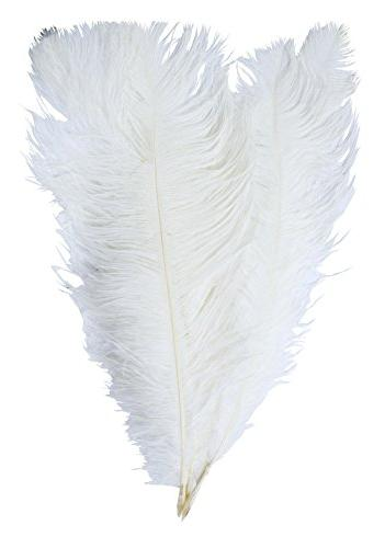 dyed plumes ostrich feathers